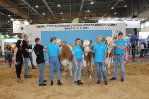 Národní výstava zvířat Brno 2021 - Fotografie 17